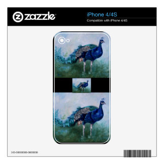 undefined iPhone 4 decal