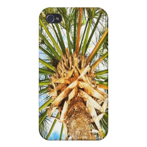 Under a Palm Tree iphone Case iPhone 4/4S Cases