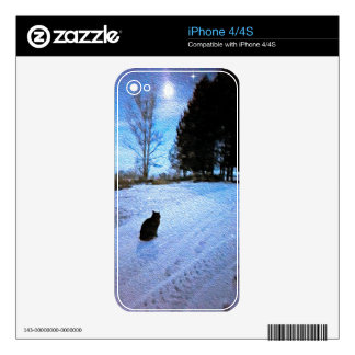 Under A Tabby Moon IPhone 4/4s Case Skin For iPhone 4