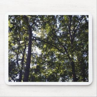 Under Oak Trees Mouse Pad