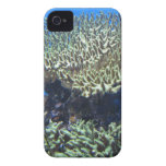 Under Sea iPhone 4 Cover