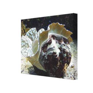 """""""Under Sea the"""" concha en lienzo, Lona Estirada Galerias"""