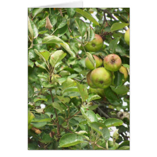 Under the Apple Tree Greeting Card