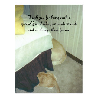 Under the Bed Postcards