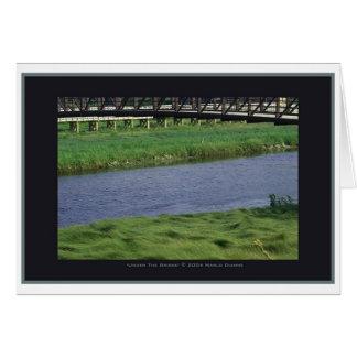 'Under the Bridge' by Marlo Dianne Card