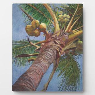 Under the Coconut Tree Plaque