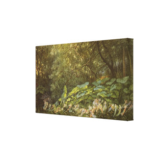Under the Dock Leaves by Doyle, Victorian Fairies Canvas Print
