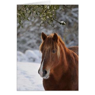 Under the mistletoe, horse Christmas Greeting Card