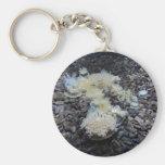 Under the Sea Basic Round Button Keychain