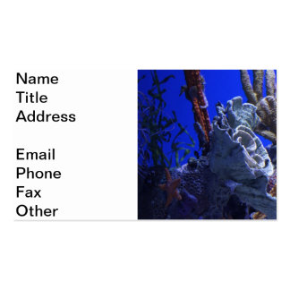 Under the Sea Business Card