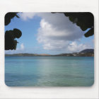 Under the Sea Grape with Turquoise Ocean View Mouse Pad
