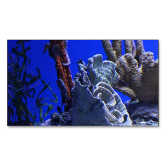 Under the Sea Magnetic Business Card
