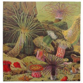 Under the Sea Napkins