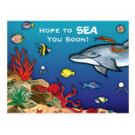 Under the Sea- Ocean Life Post Cards