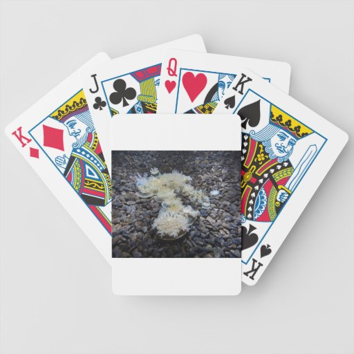 Under the Sea Poker Cards