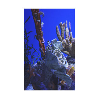 Under the Sea Stretched Canvas Print
