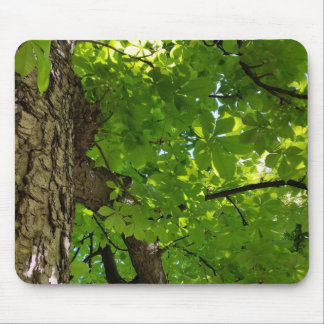 under the tree mouse pad