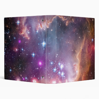 """Under the """"Wing"""" of the Small Magellanic Cloud Binder"""