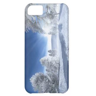 Under the Winter Sun Iphone5 Case iPhone 5C Cases