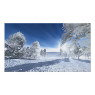 Under the Winter Sun prints Poster