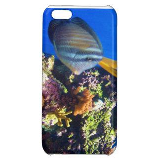 Under water iPhone 5C cases