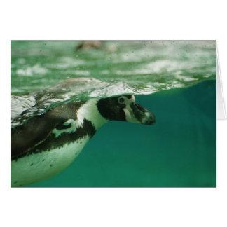 Under Water Penguin Card
