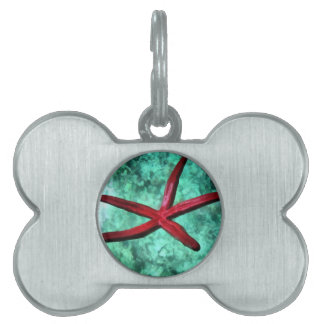 Underbelly of a starfish pet ID tag