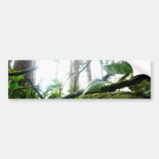 Underbrush Bumper Stickers