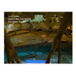 Underground Spring Postcard