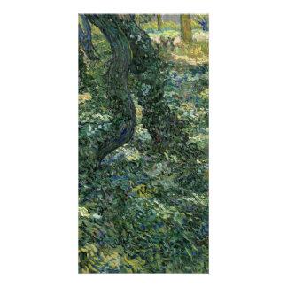 Undergrowth by Vincent Van Gogh Card