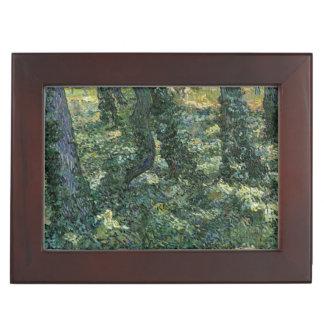 Undergrowth by Vincent Van Gogh Memory Box