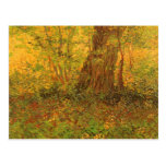 Undergrowth by Vincent van Gogh Post Card