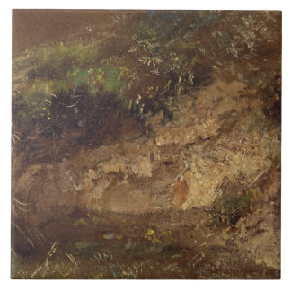 Undergrowth, c.1821 (oil on paper on board) large square tile
