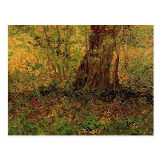Undergrowth, Vincent van Gogh Post Card