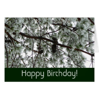 Underneath the Snow Covered Pine Birthday Card