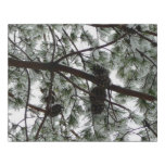 Underneath the Snow Covered Pine Faux Canvas Print