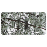 Underneath the Snow Covered Pine Tree Winter Photo License Plate