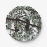 Underneath the Snow Covered Pine Tree Winter Photo Paper Plate