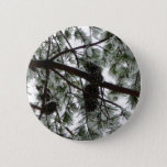 Underneath the Snow Covered Pine Tree Winter Photo Pinback Button