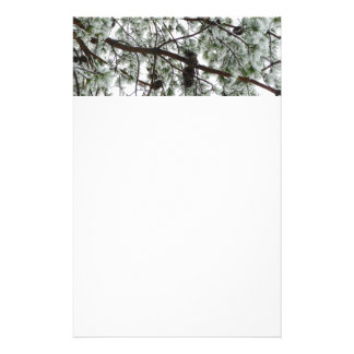 Underneath the Snow Covered Pine Tree Winter Photo Stationery