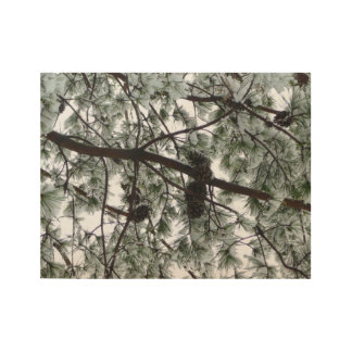 Underneath the Snow Covered Pine Tree Winter Photo Wood Poster