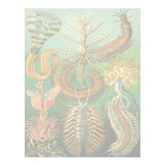 Undersea Color Letterhead
