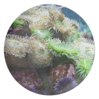 Undersea World Party Plate