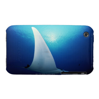 Underside of a manta ray Case-Mate iPhone 3 case