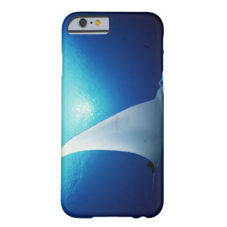 Underside of a manta ray barely there iPhone 6 case