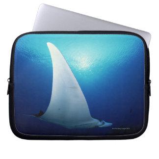 Underside of a manta ray computer sleeves