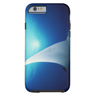 Underside of a manta ray tough iPhone 6 case