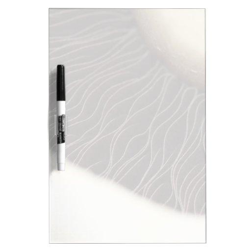 Underside of a Mushroom Dry-Erase Whiteboard