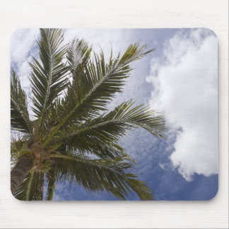 Underside of Palm Tree Mouse Pad