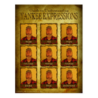 Understanding Yankee Expressions Postcard